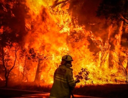 Help Us Support Australia's Firefighters